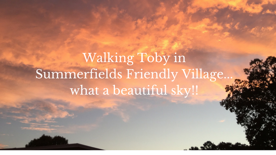 Sky in Summerfields Friendly Village