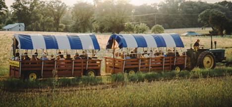 Johnson's Locust Hall Farm Hayride Right in your own backyard
